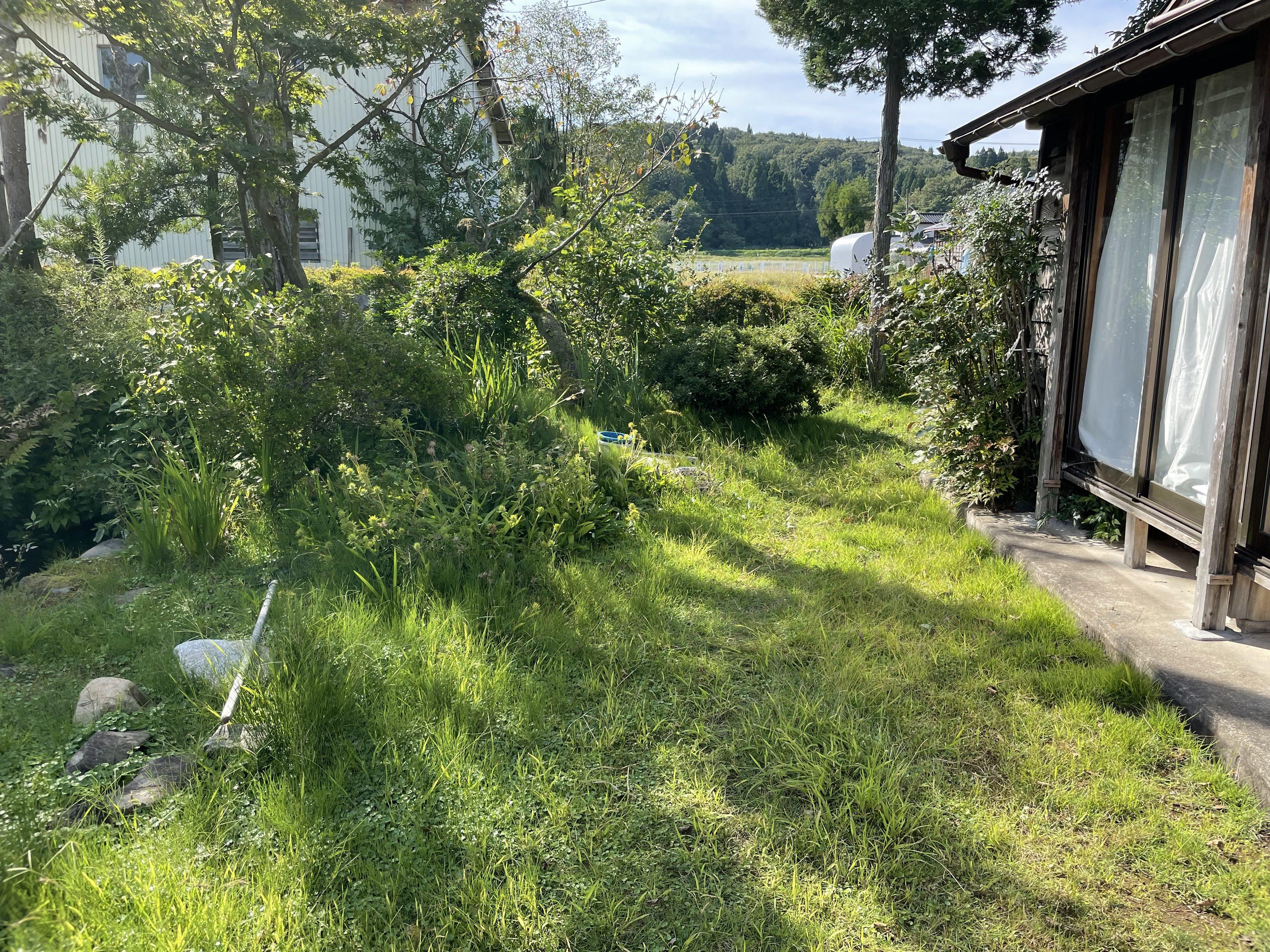自宅周りの草取りのお手伝いをお願いします。