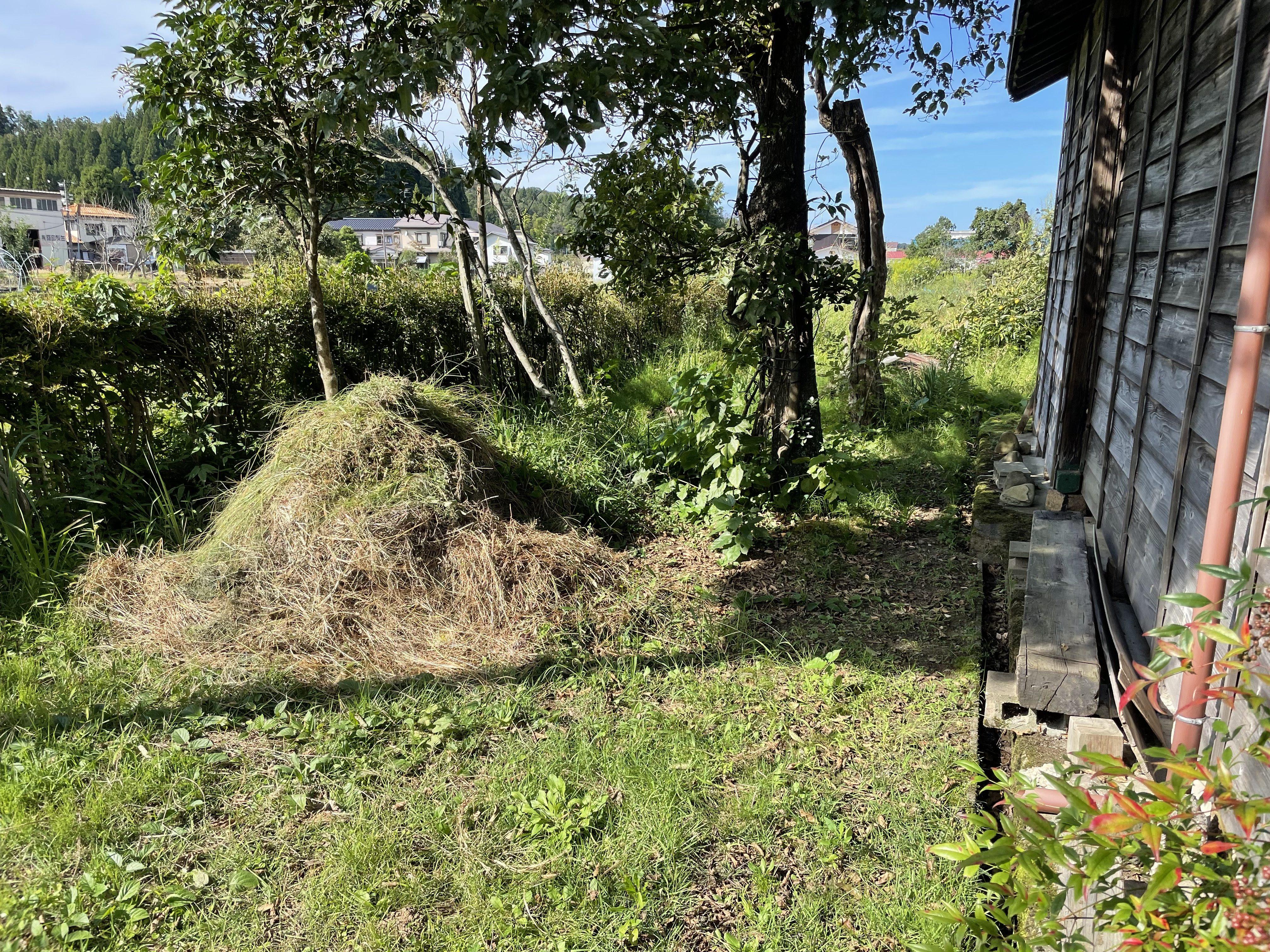 自宅周りの草取りのお手伝いをお願いします。2